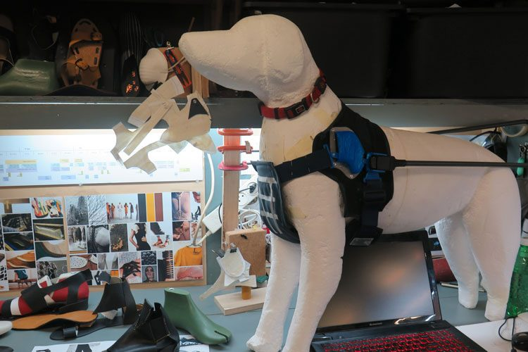עיצוב רתמה לכלב נחיה, הפרויקט של אמיר רוזן. צילום: שני הרצברג