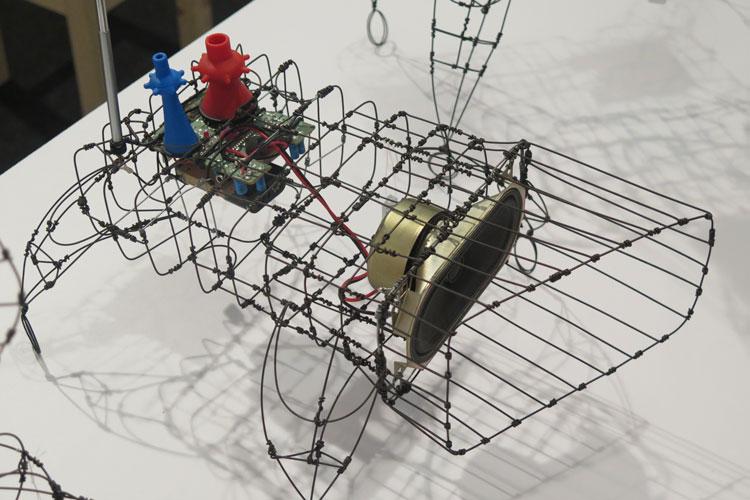 קובי סיבוני, אבולוציה. סדרה של אובייקטים פיסוליים, שעשויים מחוטי ברזל.