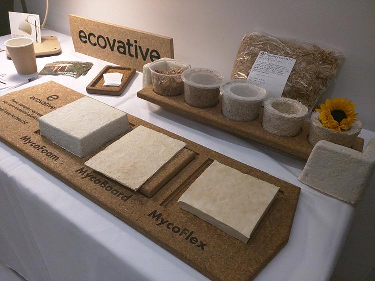 המוצרים השונים של חברת ECOVATIVE