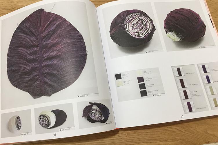 פרויקט ירקות כרוב סגול שימוש בבד ליצירת שכבות