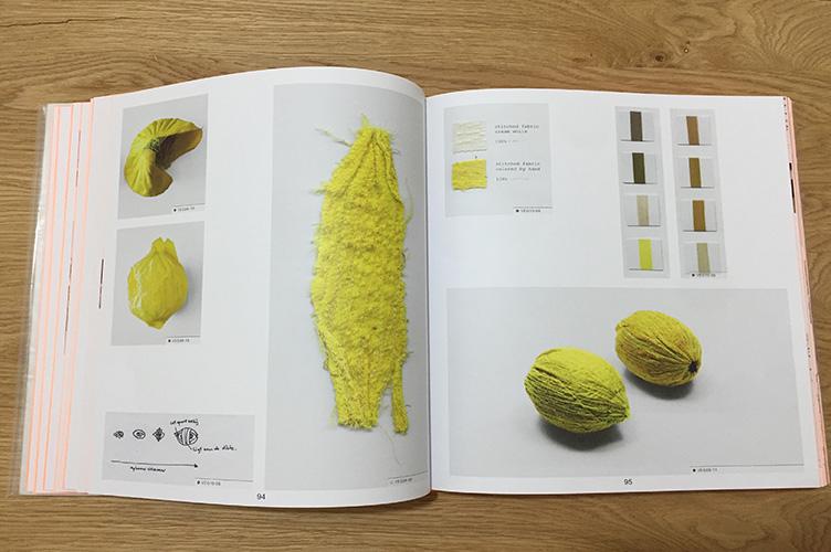 פרויקט ירקות לימון טקסטורה מבד