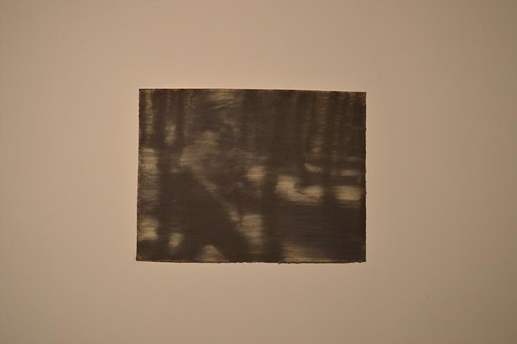 ״מרוב עצים״(1967), איל דניאלי, פסטל על נייר, 2017