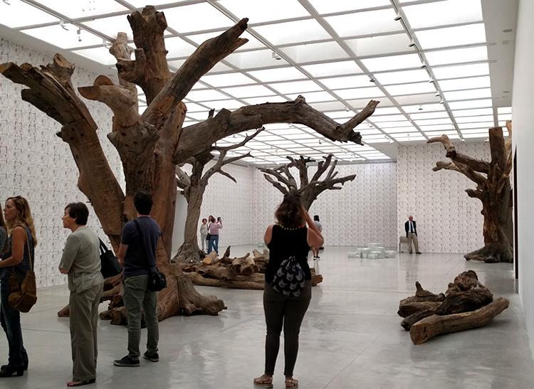 העצים שנראים שלמים הם למעשה מפורקים ומורכבים מחדש באמצעות מחברי מתכת