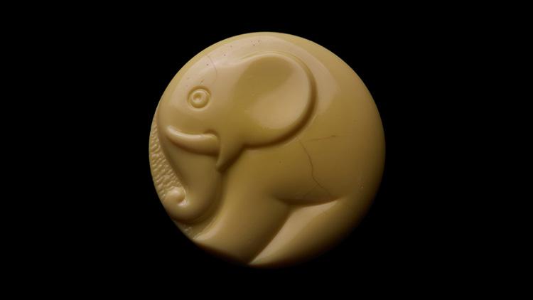 כפתור פיל