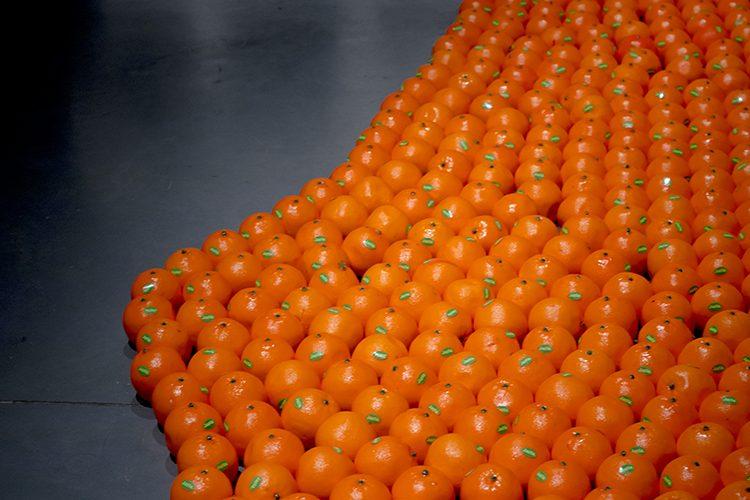 """אבנר בר חמא \ """"מפת התפוזים"""""""