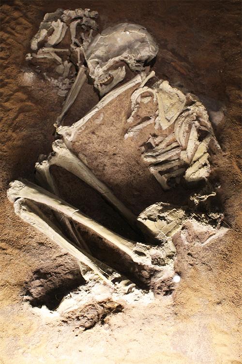 קבורת אישה לצד שלד של כלב, מלפני כ-15,000 שנה.
