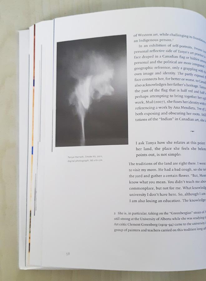 טניה הארנט, עשן, 2011.