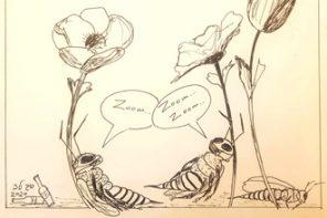 יומני קורונה: …ואיפה הדבש?