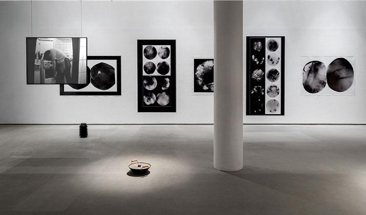 עבודתם של האמן חיים דעואל לוסקי והאמנית שנטל אקרמן. צילום: אלעד שריג