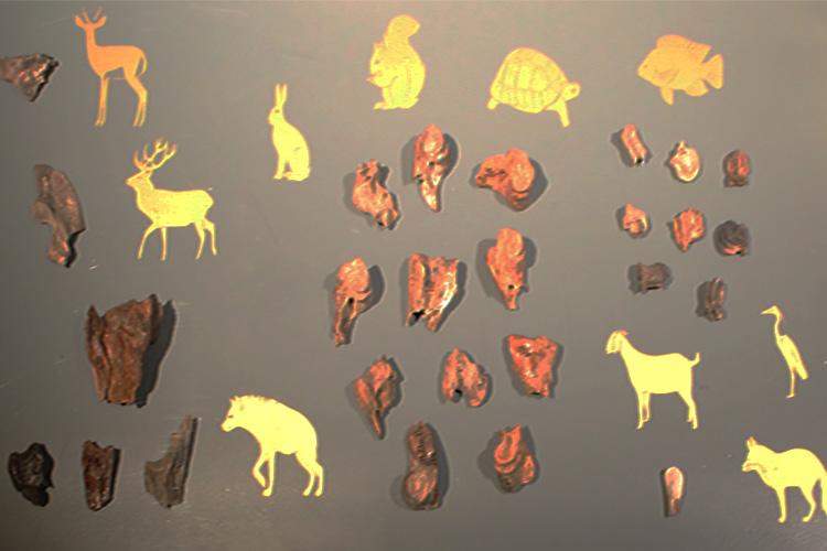 שרידי עצמות של בעלי חיים.