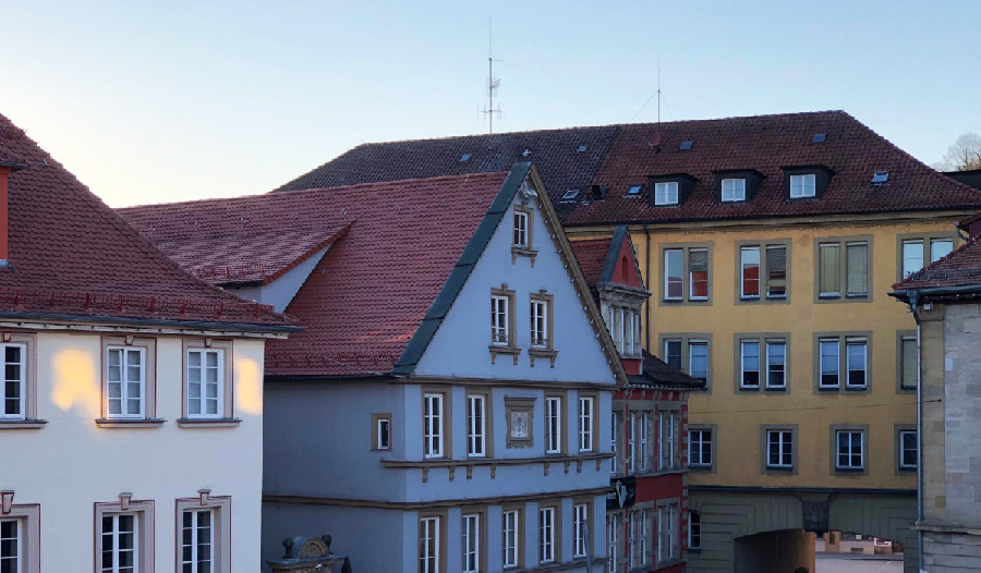 הנוף מחלון החדר שלי. צילום: רון חדד