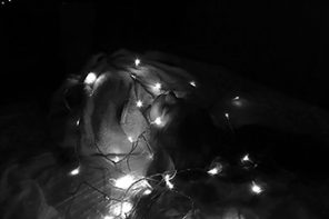 מחושך לאור: שלווה מוארת