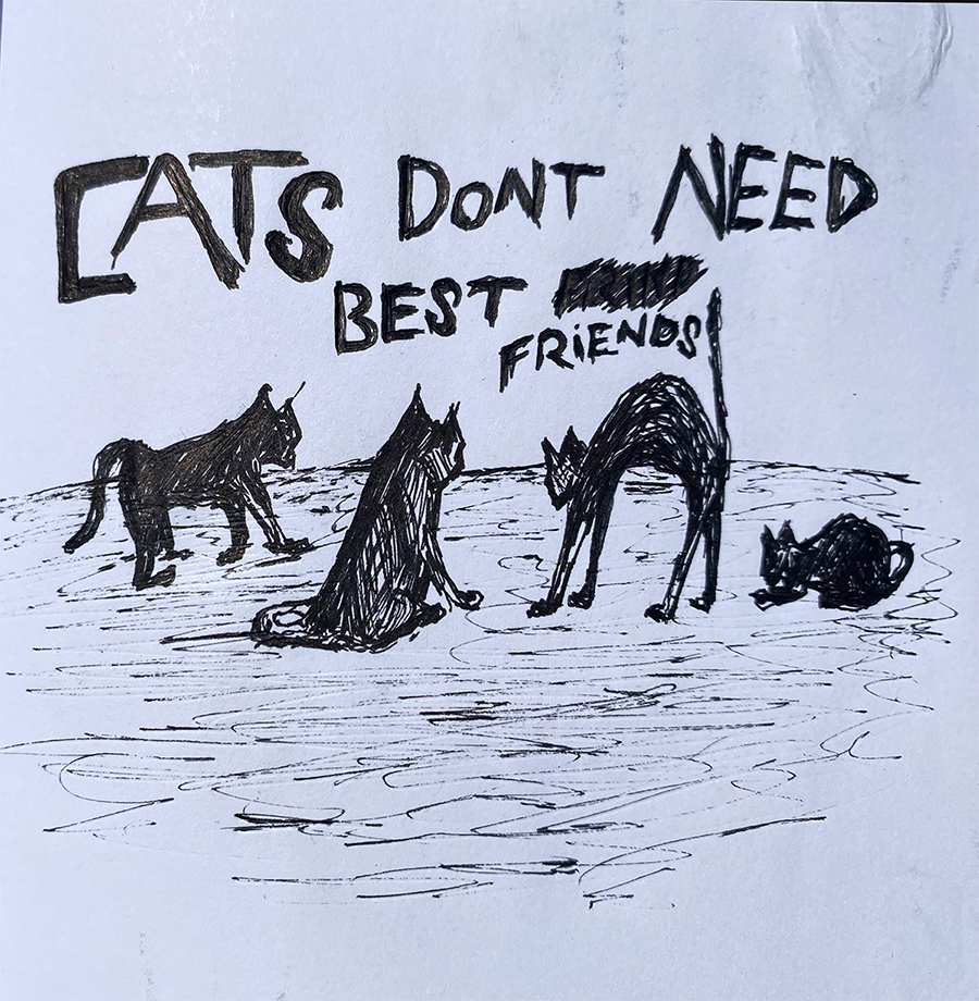 Cats Don't Need Best Friends